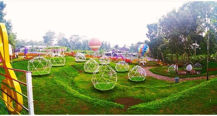 alamanda flower garden wisata jogja terbaru 2021